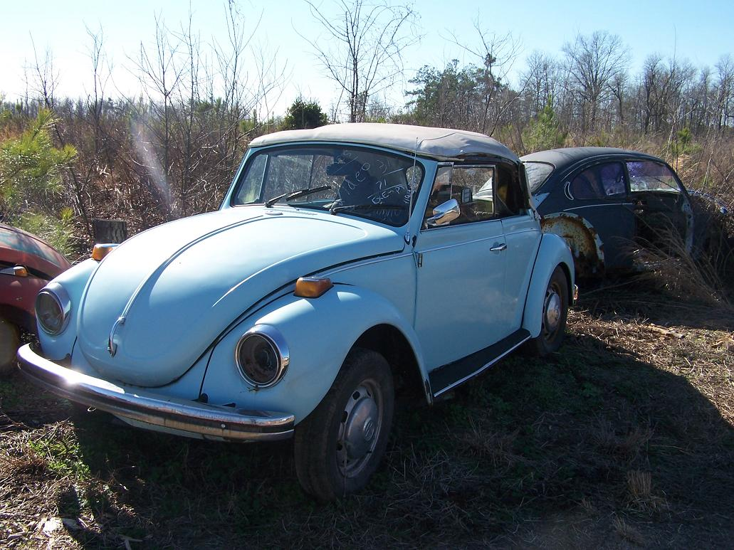 My day trip to the VW savage yar